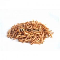 Sušene múčne červy 160 gramov